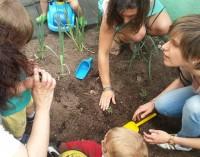 Willka-Los Nidos: una escuela 'creaActiva'
