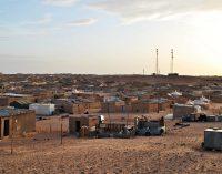 Un encuentro en la arena bajo el cielo y la luna del Sahara