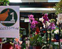 Una moneda ecológica que premia el reciclaje