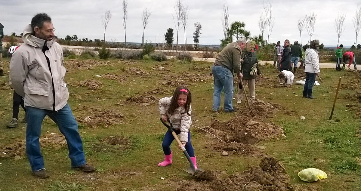 Plantación colectiva de árboles detrás del polideportivo Hortaleza