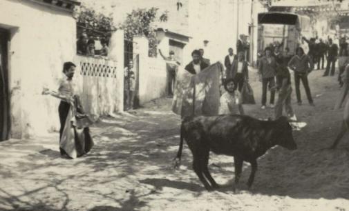 La web Memoria de los Barrios Hortaleza, ya disponible