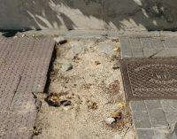 Degradación del barrio de Palomas