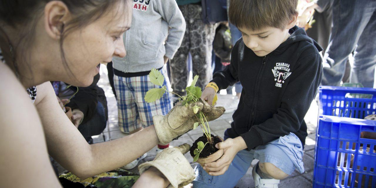 El Día del Árbol se celebra en Hortaleza todo un mes