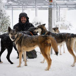 """""""Ser 'musher' es una forma de vida"""""""