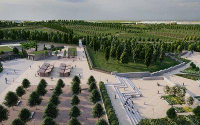 El primer árbol del 'Central Park' de Valdebebas, cinco años después